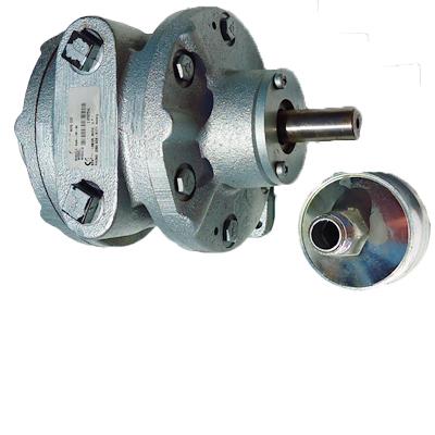 Air Motor & Parts
